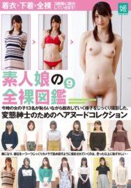 素人娘の全裸図鑑9 今時の女の子13名が恥らいながら脱衣していく様子をじっくり撮影した、変態紳士のためのヘアヌードコレクション [KAGP-127/kagp00127]